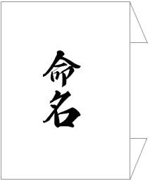 正式な命名書の上包みの表書き「命名」